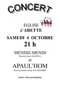 Affiche du concert à Arette en 2014